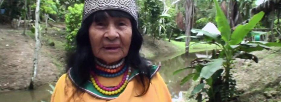 Perú: asesinan a una lideresa del pueblo shipibo konibo
