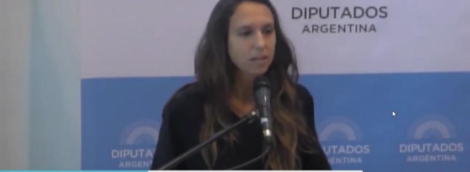 """#AbortoLegalYa: """"Debemos buscar herramientas alternativas al Derecho Penal"""""""