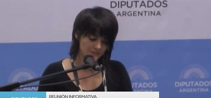 """#AbortoLegalYa: """"Le demandamos al Estado que reconozca nuestra capacidad indelegable de decidir"""""""