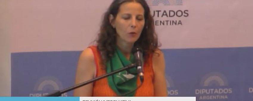 """#AbortoLegalYa: """"Necesitamos una ley superadora, que habilite el ejercicio de plena ciudadanía de las mujeres"""""""