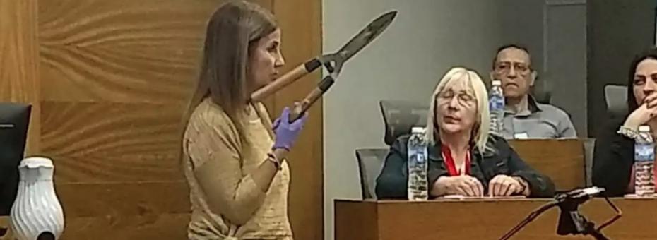 Brenda Barattini: por qué fue condenada por tentativa de homicidio