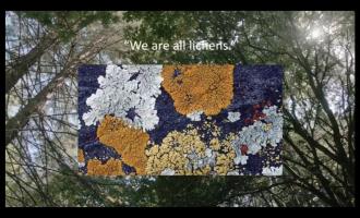 Ontología del futuro: ecológico y no binario
